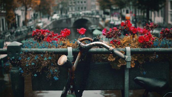 fahrrad_vintage_deko2